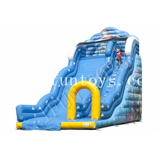 Outdoor Inflatable Wave Slide / Fun Slide with Air Blower for Kids